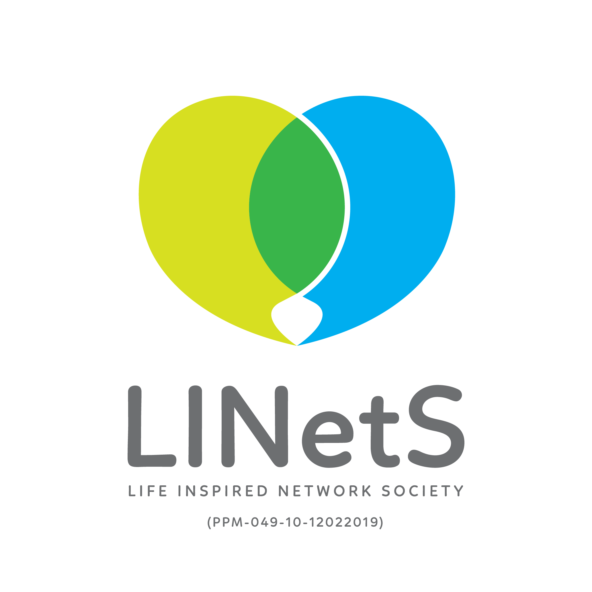 Life Inspired Network Society (LINetS)